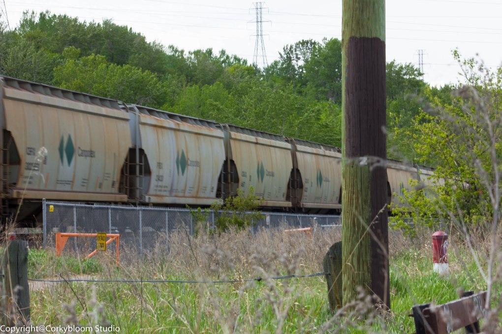 train_01 (1 of 1)