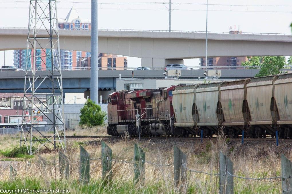 train_02 (1 of 1)