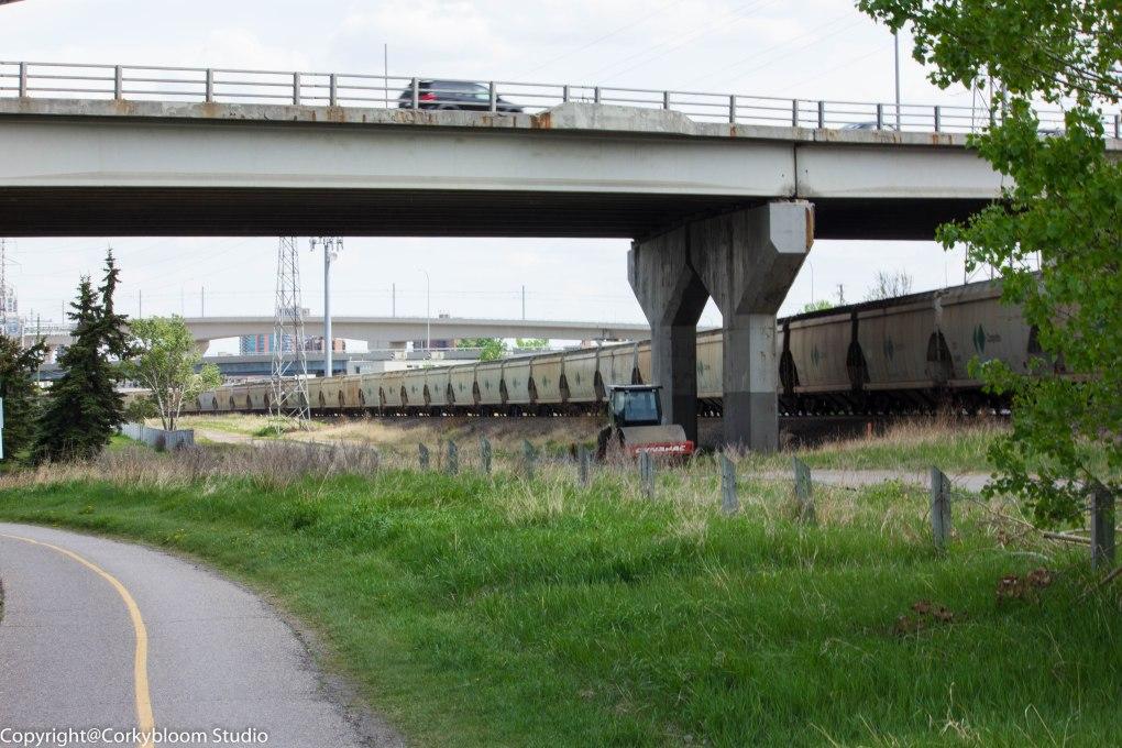 train_04 (1 of 1)
