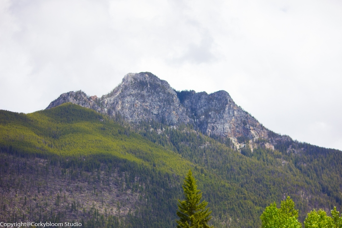 Mountains in BC